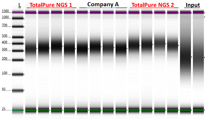 PCR Clean Up and Beads Size Selection - Mag-Bind® TotalPure NGS - Figure 4