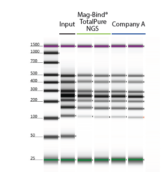 PCR Clean Up and Beads Size Selection - Mag-Bind® TotalPure NGS - Figure 2